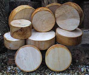Boxwood_cross-section