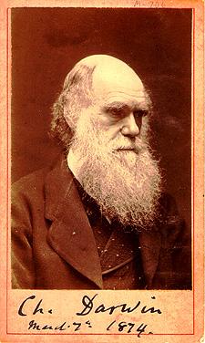 Cameron_Darwin_1874