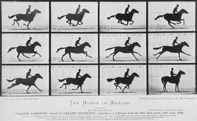 Muybridge_Galloping_Horse_1878