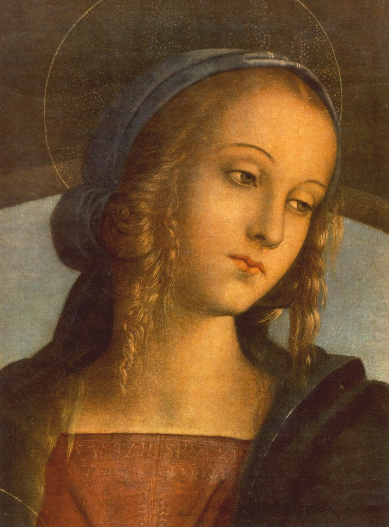 Study   for   the   head  of  the   Virgin   not   found  so a  detail  of  another   painting  is  shown.